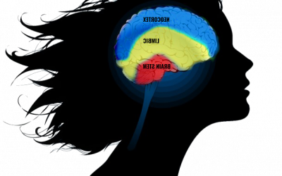 Myth Buster #2: Is Your Brain Your Ally… Or Biggest Foe?
